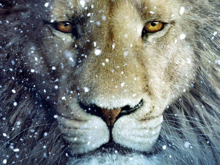 "The Rebellious Privacy of God: Rowan Williams on Narnia in ""The Lion's World"""