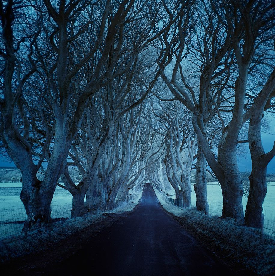 Andy Lee: Desolate road
